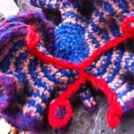 Hyperbolic Crochet, Luciana